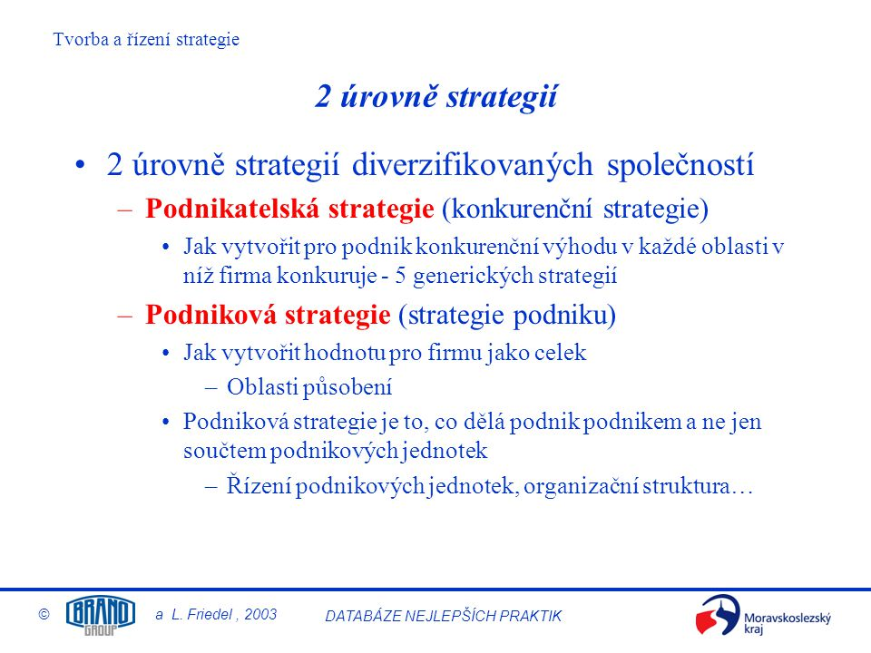 Tvorba a řízení strategie © a L. Friedel, 2003 DATABÁZE NEJLEPŠÍCH PRAKTIK 2 úrovně strategií 2 úrovně strategií diverzifikovaných společností –Podnik