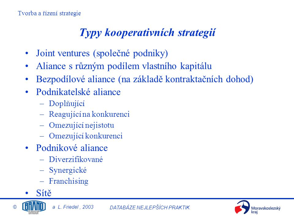 Tvorba a řízení strategie © a L. Friedel, 2003 DATABÁZE NEJLEPŠÍCH PRAKTIK Typy kooperativních strategií Joint ventures (společné podniky) Aliance s r