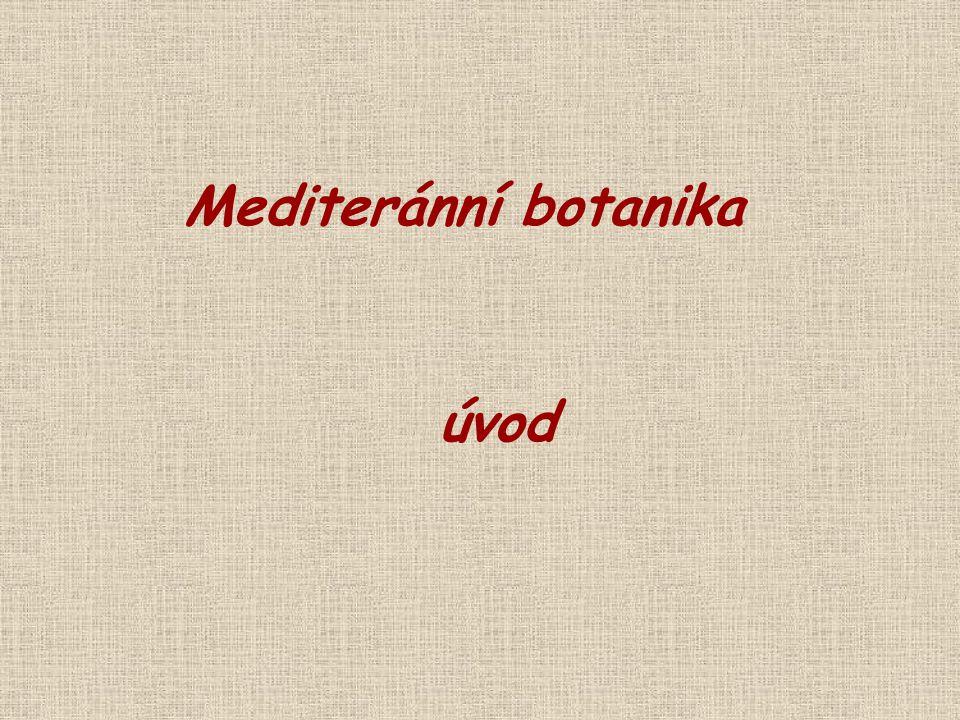 (sub)endemické dřeviny Ceratonia (Fabaceae) - 1 Chamaerops (Araceae) - 1 Petteria (Fabaceae) - 1 Tetraclinis (Cupressaceae) - 1 Cedrus (Pinaceae) - 3/4 Punica (Lythraceae) - 2 Fabaceae (Argyrocytisus, Gonocytisus, Hesperolaburnum, Podocytisus) Ceratonia siliqua Chamaerops humilisPetteria ramentacea Istrie + Albánie Tetraclinis articulata J Evropa + S Afrika Cedrus atlantica C.