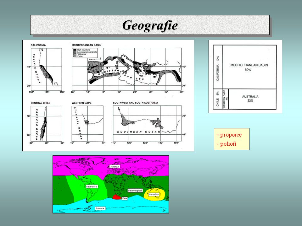 Endemismus - souhrn Atlas: 237 - 306 E - izolace + výška Andalusie: 484 E + 465 SE - Sierra Nevada: 177 E (66 steno) - diverzita stanovišť Rif: 190 E Alžírsko: 90 E Přímořské Alpy: 140 E - přežití starobylých typů + imigrace nových - gradient stanovišť Řecko (Peloponés): 300 E (2 400) Anatolie (JV): 675 E ( 3 365) Lybie (část): 137 E (1 300) OstrovDruhyEndemity s.s.Endemity s.l.