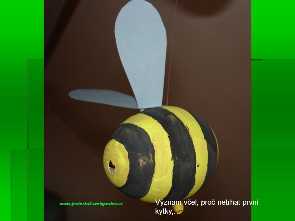 Význam včel, proč netrhat první kytky,…