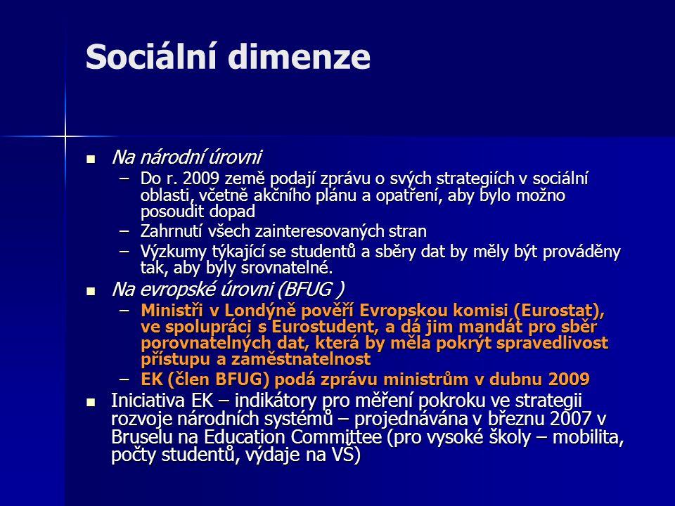 Sociální dimenze Na národní úrovni Na národní úrovni –Do r.