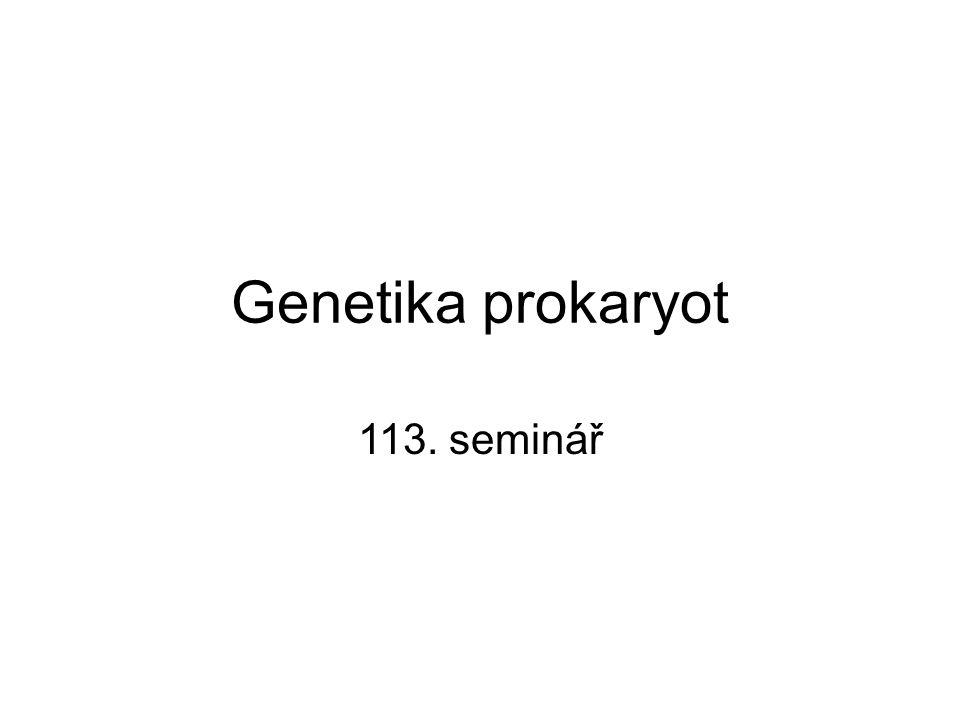 Genetika prokaryot 113. seminář