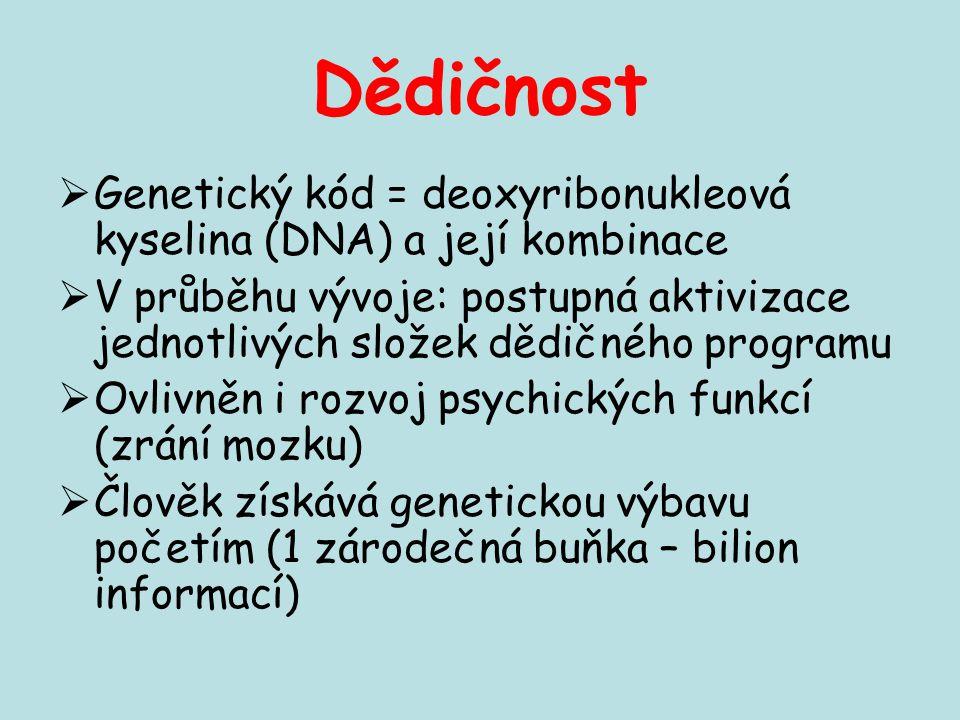 Dědičnost  Genetický kód = deoxyribonukleová kyselina (DNA) a její kombinace  V průběhu vývoje: postupná aktivizace jednotlivých složek dědičného pr