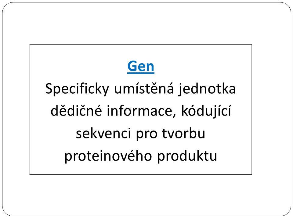 Gen Specificky umístěná jednotka dědičné informace, kódující sekvenci pro tvorbu proteinového produktu