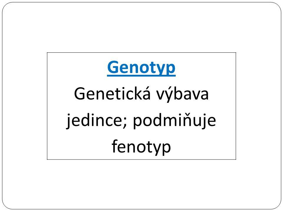 Genotyp Genetická výbava jedince; podmiňuje fenotyp