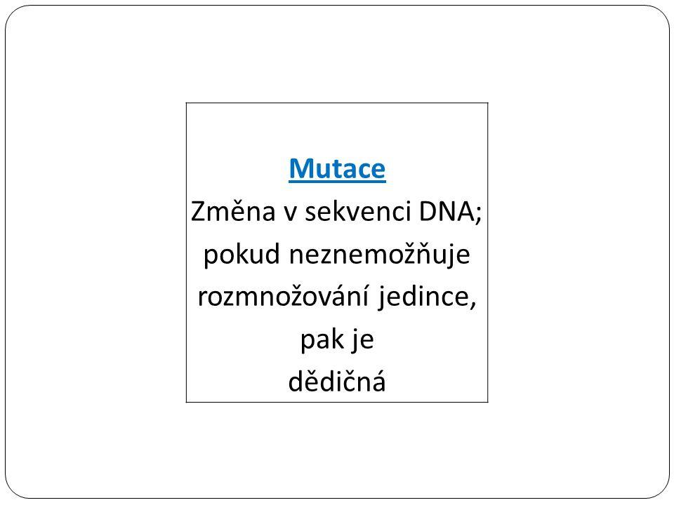 Mutace Změna v sekvenci DNA; pokud neznemožňuje rozmnožování jedince, pak je dědičná