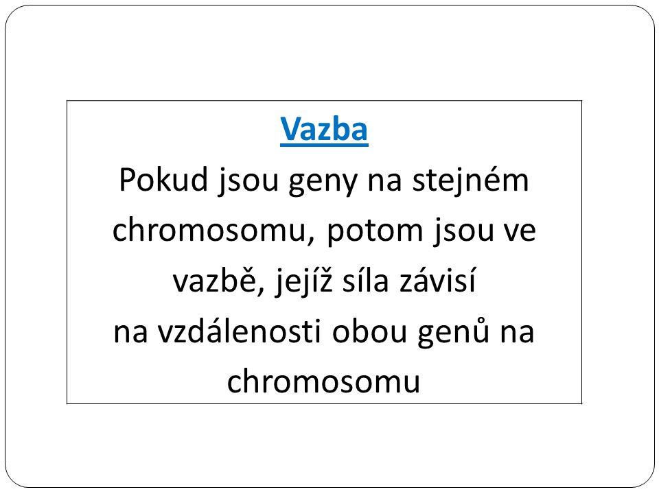 Vazba Pokud jsou geny na stejném chromosomu, potom jsou ve vazbě, jejíž síla závisí na vzdálenosti obou genů na chromosomu