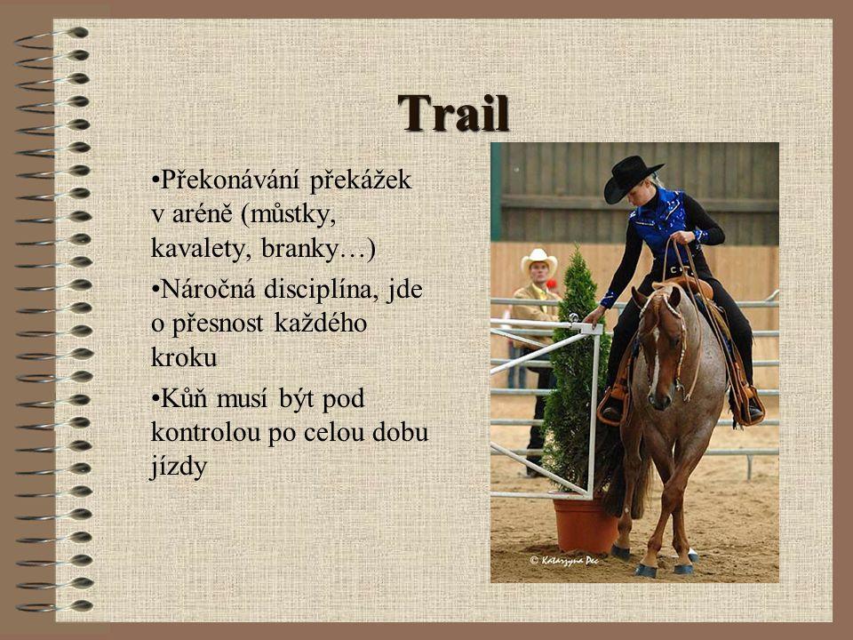 Western horsemanship Dokonalost a neznatelnost pomůcek jezdce Vztah mezi jezdcem a koněm Jemná komunikace mezi partnery