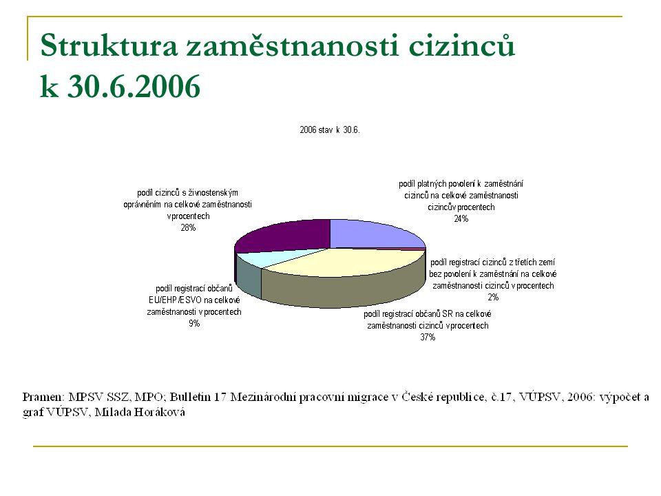 Struktura zaměstnanosti cizinců k 30.6.2006
