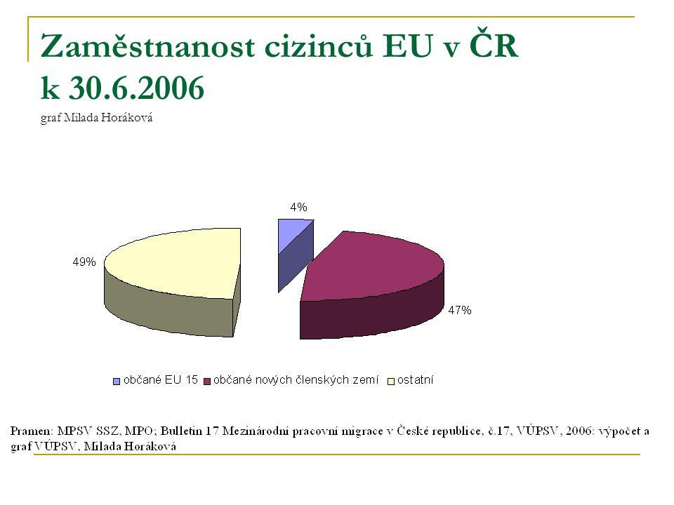 Zaměstnanost cizinců EU v ČR k 30.6.2006 graf Milada Horáková