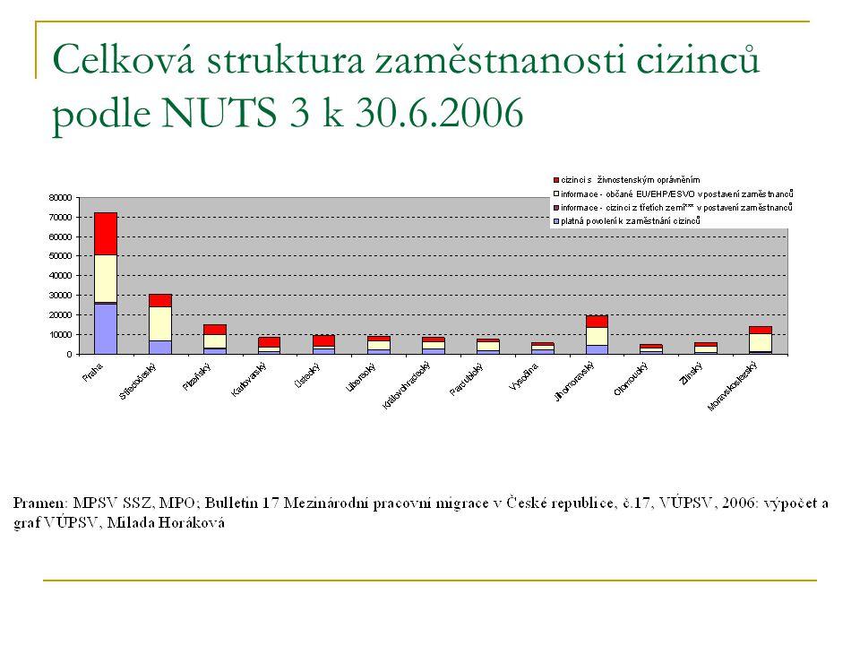 Celková struktura zaměstnanosti cizinců podle NUTS 3 k 30.6.2006