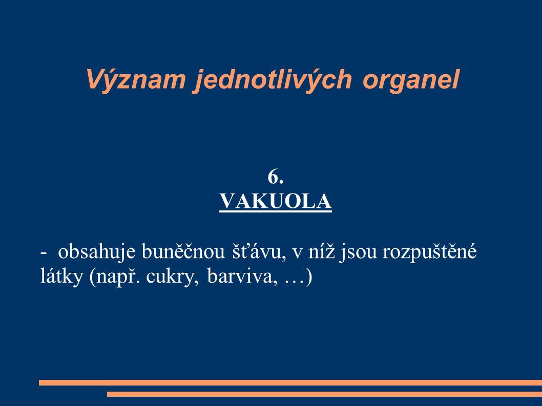 Význam jednotlivých organel 6. VAKUOLA - obsahuje buněčnou šťávu, v níž jsou rozpuštěné látky (např. cukry, barviva, …)