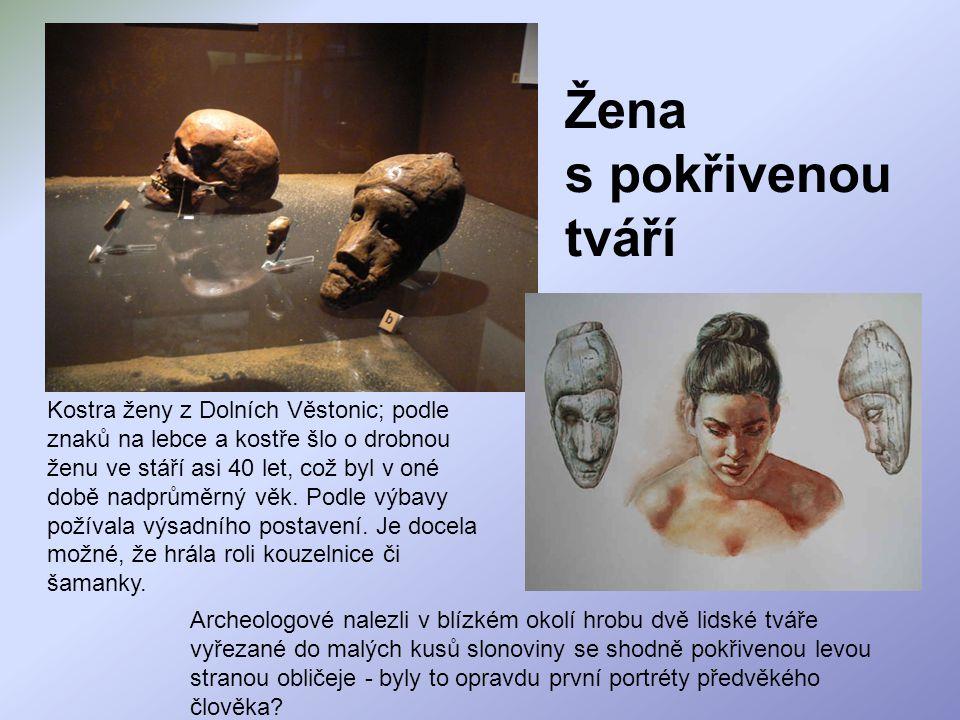 Žena s pokřivenou tváří Kostra ženy z Dolních Věstonic; podle znaků na lebce a kostře šlo o drobnou ženu ve stáří asi 40 let, což byl v oné době nadpr