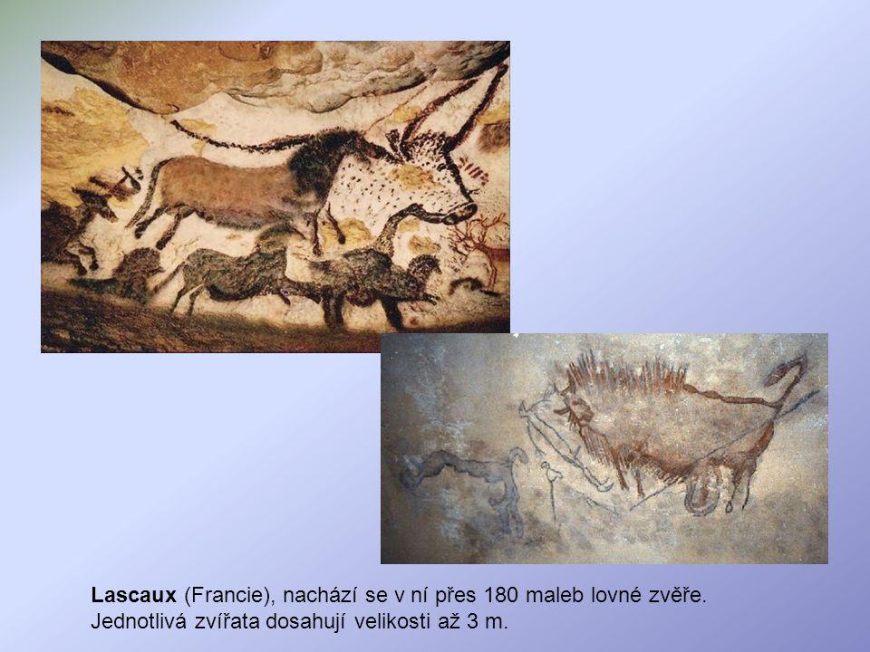 Lascaux (Francie), nachází se v ní přes 180 maleb lovné zvěře. Jednotlivá zvířata dosahují velikosti až 3 m.