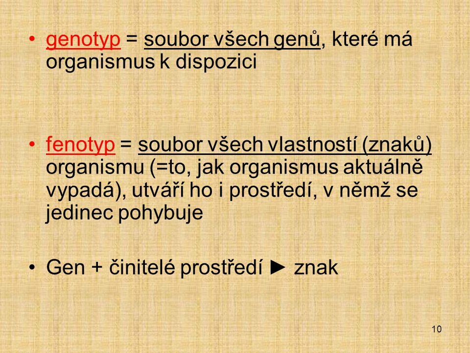 genotyp = soubor všech genů, které má organismus k dispozici fenotyp = soubor všech vlastností (znaků) organismu (=to, jak organismus aktuálně vypadá), utváří ho i prostředí, v němž se jedinec pohybuje Gen + činitelé prostředí ► znak 10