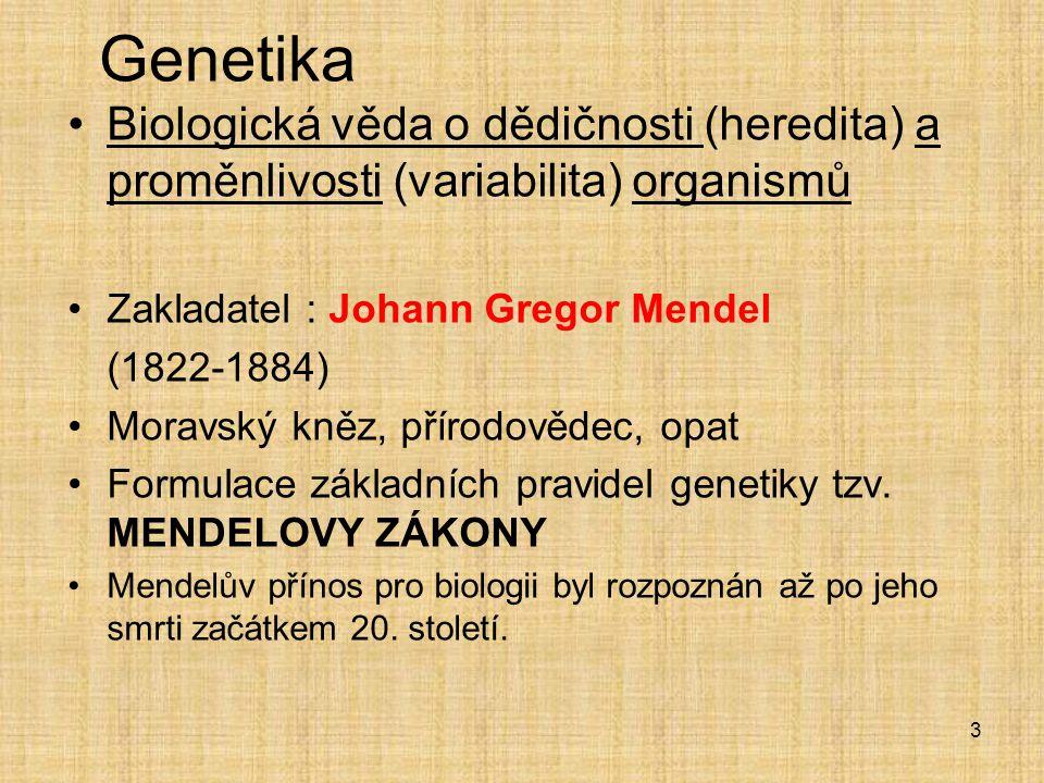 Genetika Biologická věda o dědičnosti (heredita) a proměnlivosti (variabilita) organismů Zakladatel : Johann Gregor Mendel (1822-1884) Moravský kněz, přírodovědec, opat Formulace základních pravidel genetiky tzv.