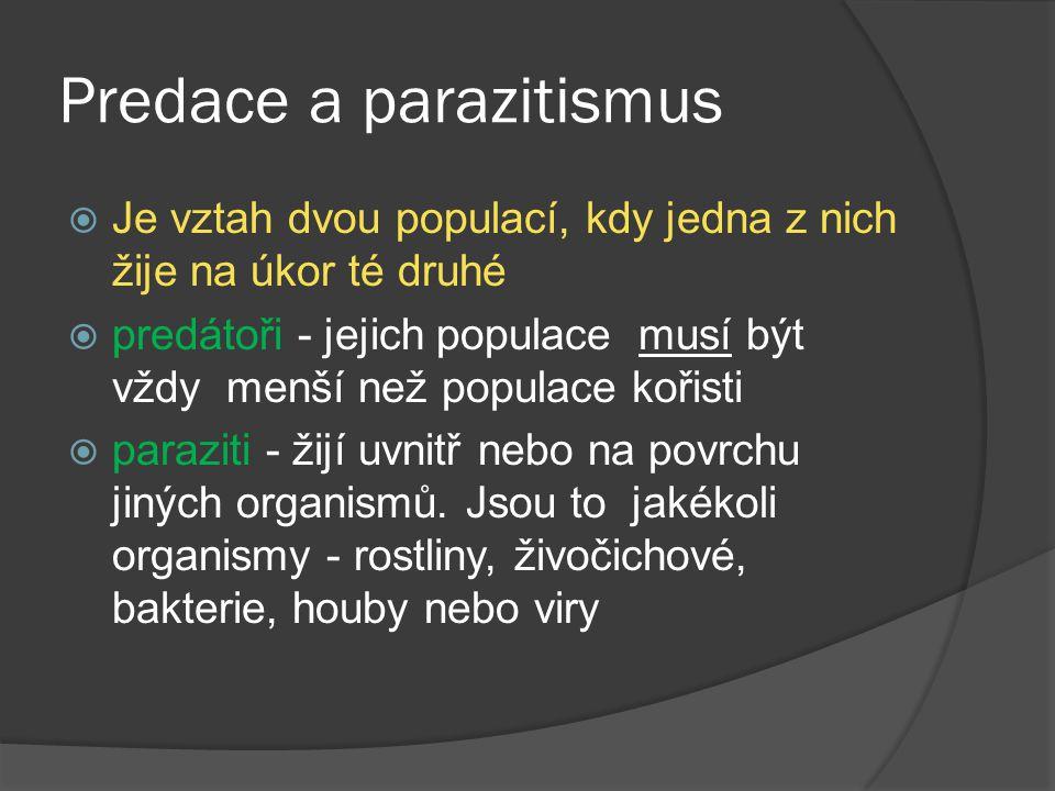 Predace a parazitismus  Je vztah dvou populací, kdy jedna z nich žije na úkor té druhé  predátoři - jejich populace musí být vždy menší než populace