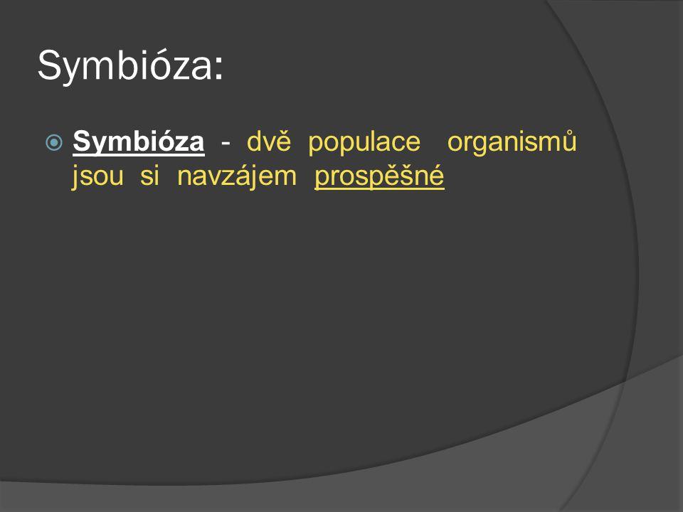 Symbióza:  Symbióza - dvě populace organismů jsou si navzájem prospěšné