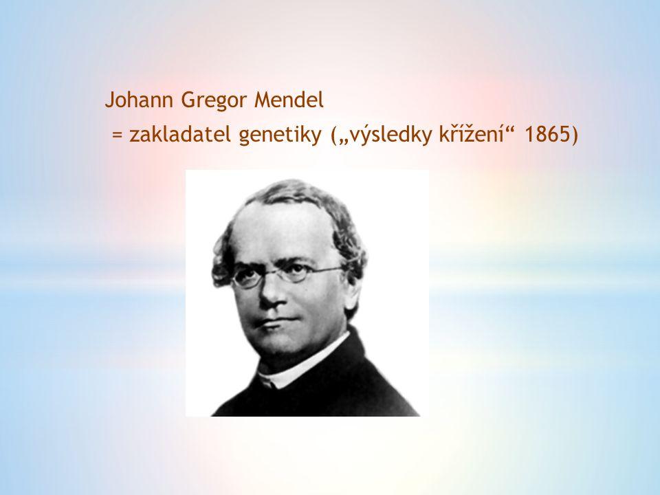 """Johann Gregor Mendel = zakladatel genetiky (""""výsledky křížení 1865)"""