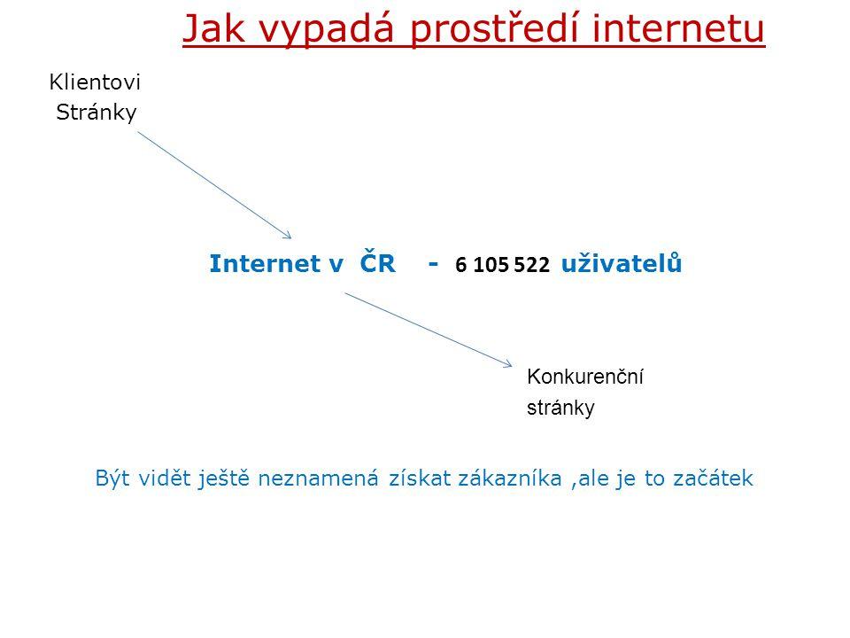 Konkurenční stránky Jak vypadá prostředí internetu Internet v ČR - 6 105 522 uživatelů Klientovi Stránky Být vidět ještě neznamená získat zákazníka,al