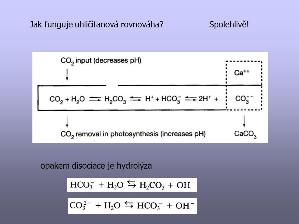 Jak funguje uhličitanová rovnováha?Spolehlivě! opakem disociace je hydrolýza