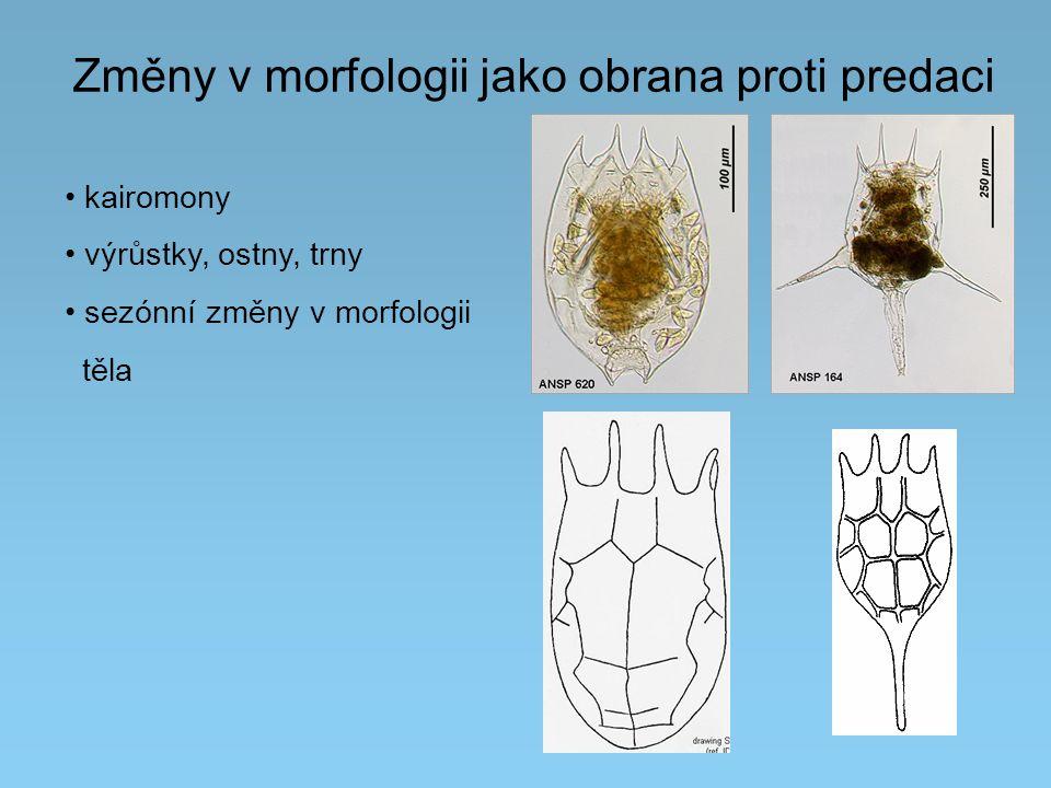 Změny v morfologii jako obrana proti predaci kairomony výrůstky, ostny, trny sezónní změny v morfologii těla