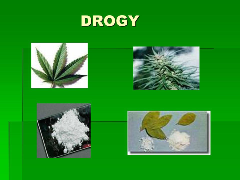 DROGY DROGY