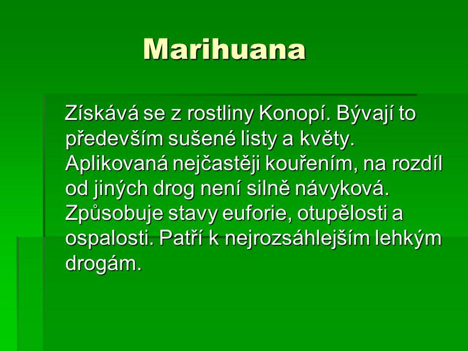 Marihuana Marihuana Získává se z rostliny Konopí.Bývají to především sušené listy a květy.