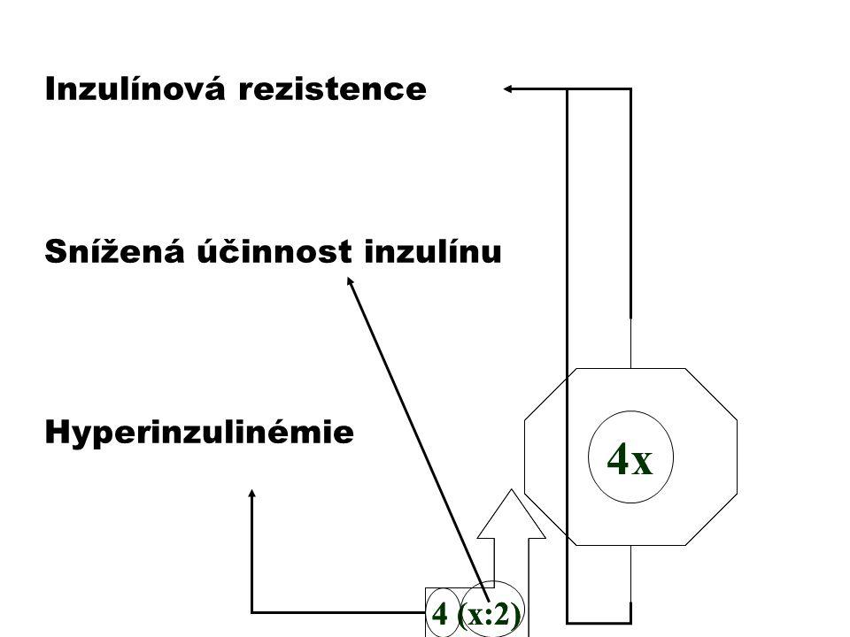 4 (x:2) Inzulínová rezistence Snížená účinnost inzulínu Hyperinzulinémie 4x 4 (x:2)