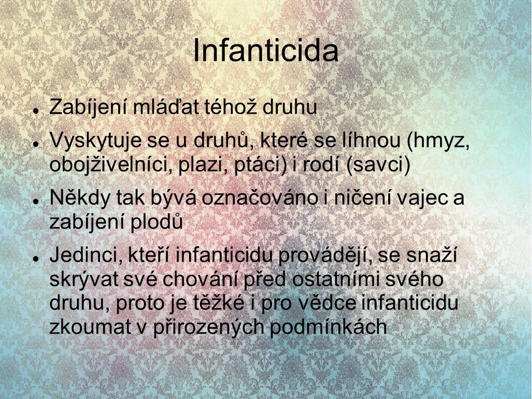 Infanticida Zabíjení mláďat téhož druhu Vyskytuje se u druhů, které se líhnou (hmyz, obojživelníci, plazi, ptáci) i rodí (savci) Někdy tak bývá označo