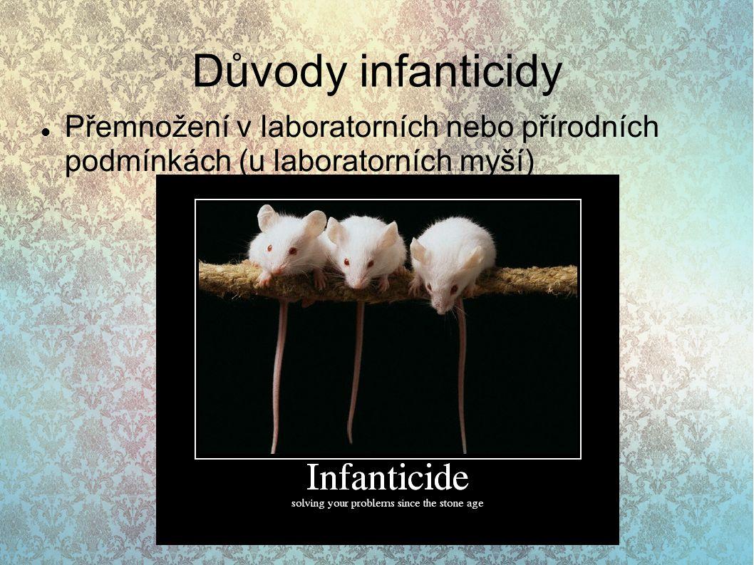Důvody infanticidy Přemnožení v laboratorních nebo přírodních podmínkách (u laboratorních myší)