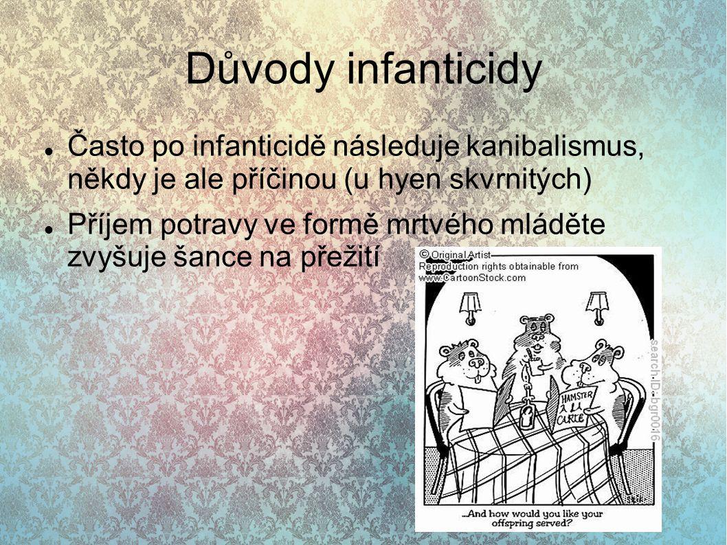 Důvody infanticidy Často po infanticidě následuje kanibalismus, někdy je ale příčinou (u hyen skvrnitých) Příjem potravy ve formě mrtvého mláděte zvyš