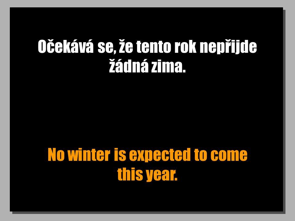 Očekává se, že tento rok nepřijde žádná zima. No winter is expected to come this year.
