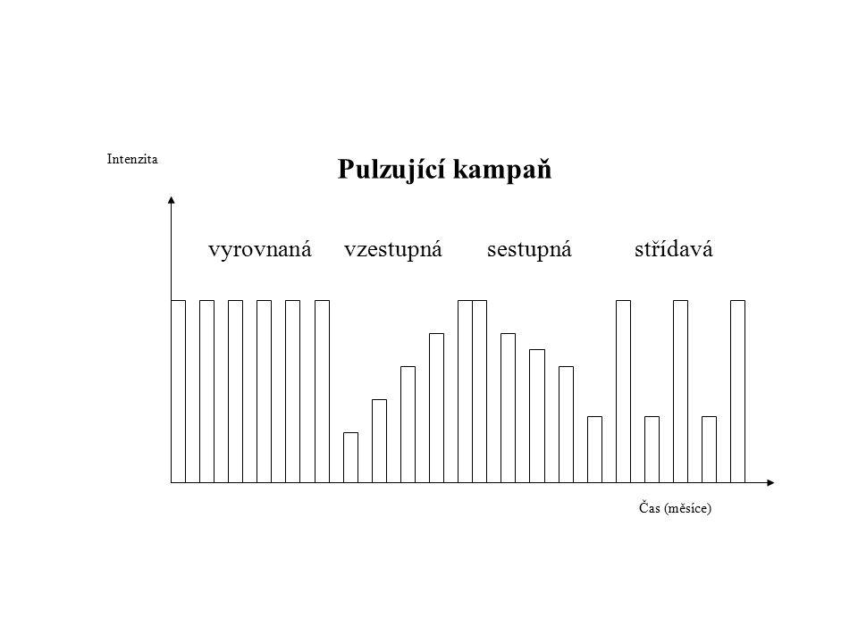 Pulzující kampaň vyrovnaná vzestupná sestupná střídavá Čas (měsíce) Intenzita