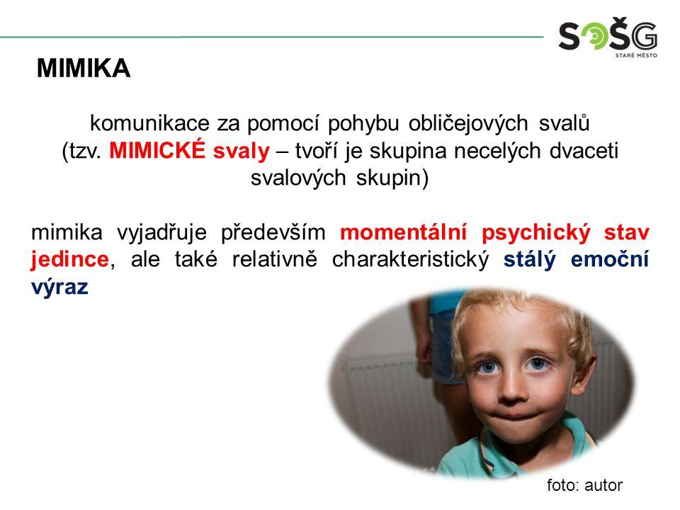 MIMIKA komunikace za pomocí pohybu obličejových svalů (tzv.