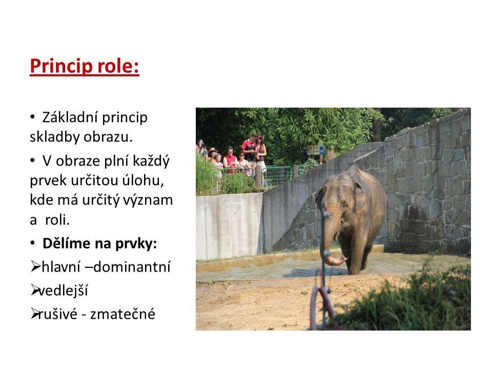 Princip role: Základní princip skladby obrazu. V obraze plní každý prvek určitou úlohu, kde má určitý význam a roli. Dělíme na prvky:  hlavní –domina