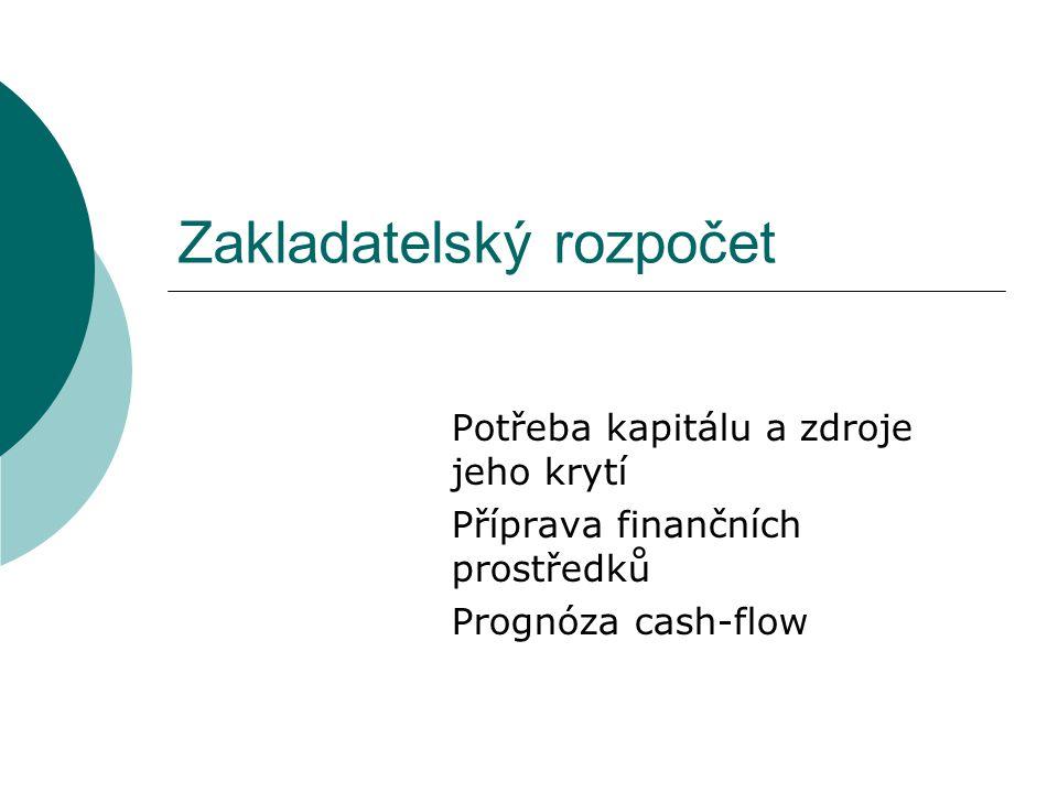 Zakladatelský rozpočet Potřeba kapitálu a zdroje jeho krytí Příprava finančních prostředků Prognóza cash-flow