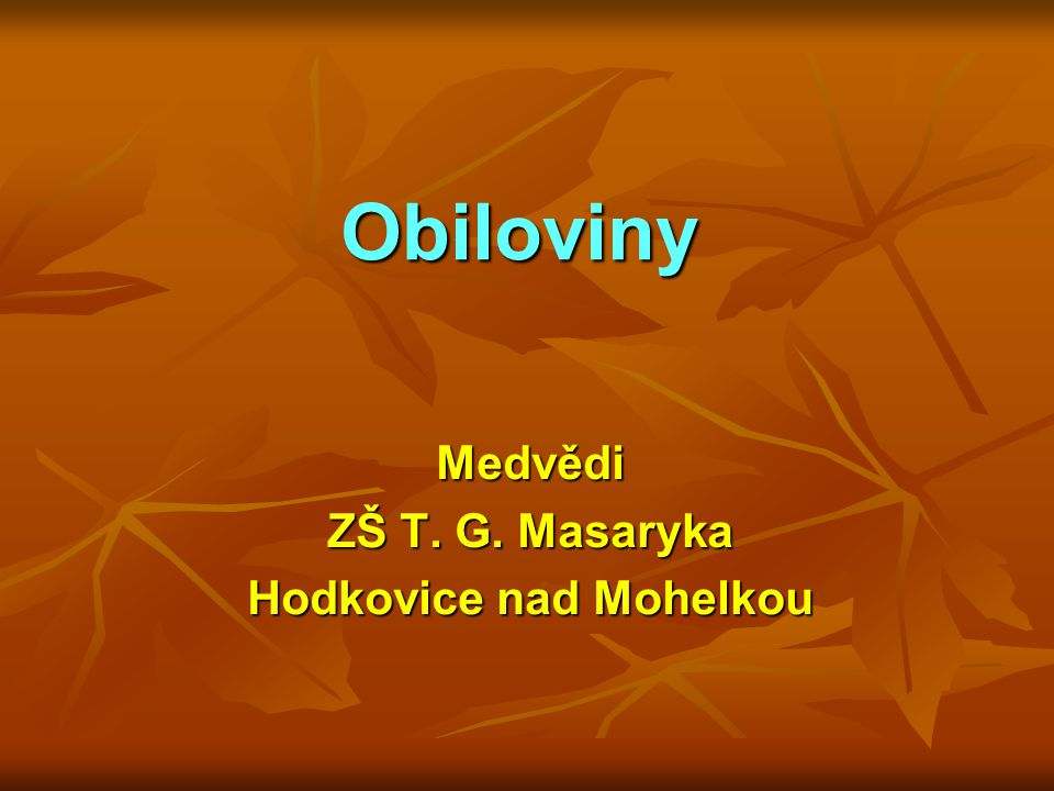 Obiloviny Medvědi ZŠ T. G. Masaryka Hodkovice nad Mohelkou