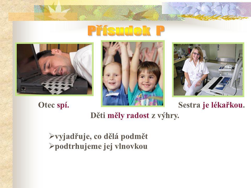 Otec spí.Děti měly radost z výhry. Sestra je lékařkou.