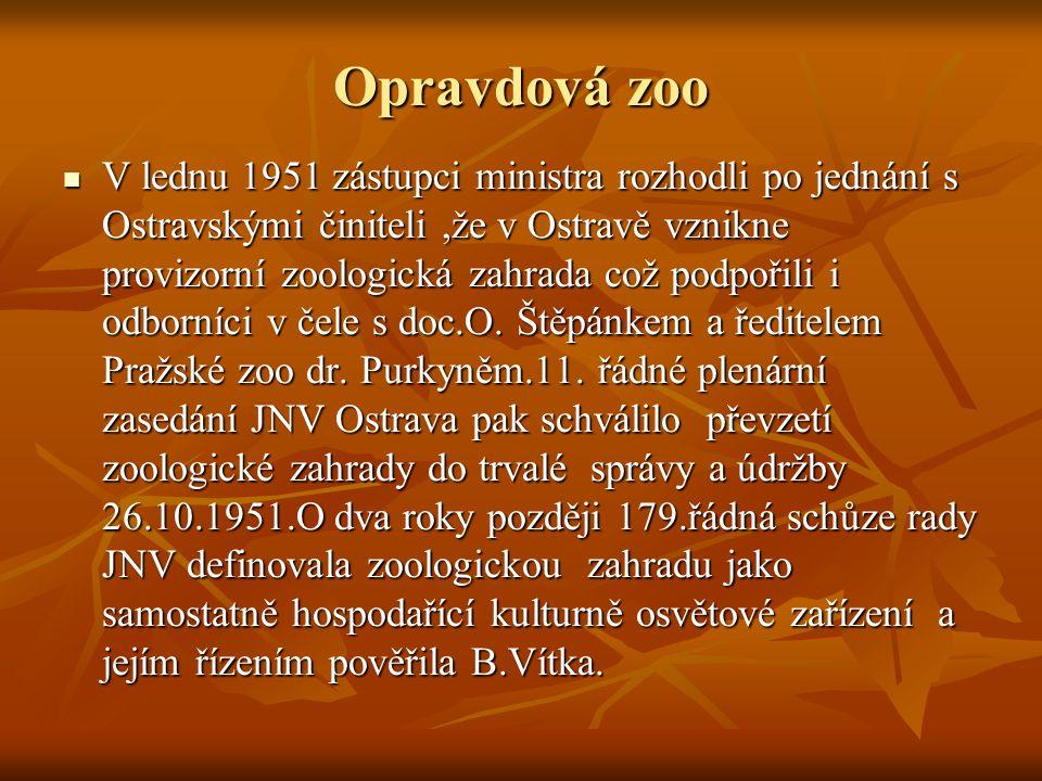 Opravdová zoo V lednu 1951 zástupci ministra rozhodli po jednání s Ostravskými činiteli,že v Ostravě vznikne provizorní zoologická zahrada což podpoři