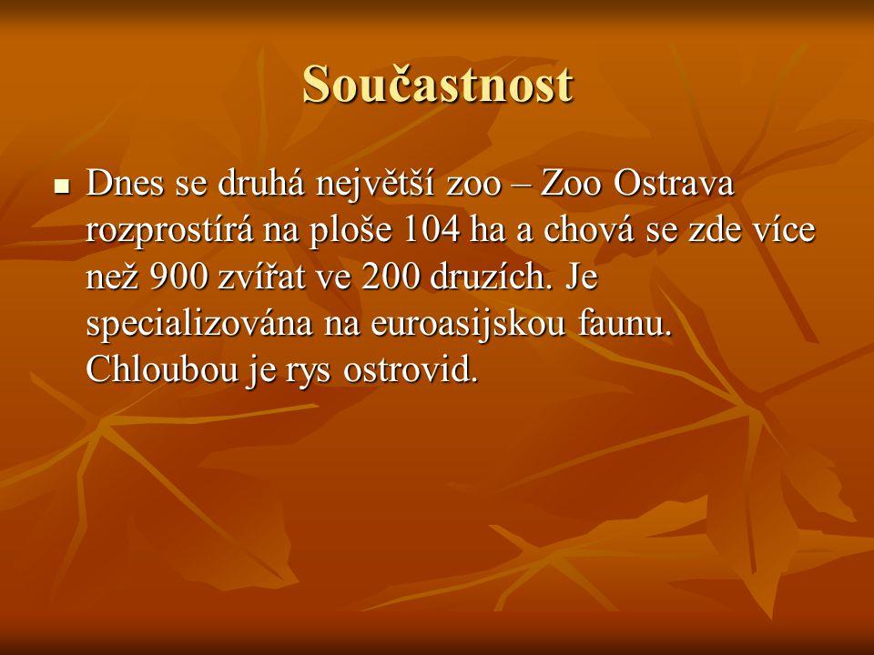 Součastnost Dnes se druhá největší zoo – Zoo Ostrava rozprostírá na ploše 104 ha a chová se zde více než 900 zvířat ve 200 druzích. Je specializována