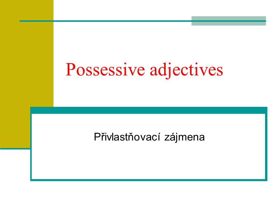 Possessive adjectives Přivlastňovací zájmena