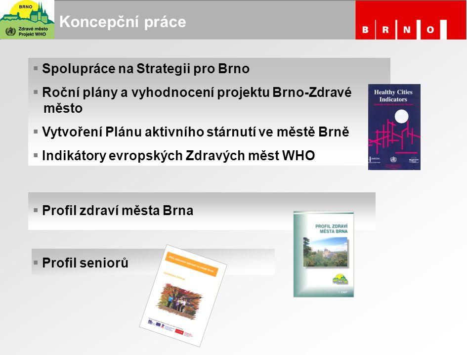 Koncepční práce  Spolupráce na Strategii pro Brno  Roční plány a vyhodnocení projektu Brno-Zdravé město  Vytvoření Plánu aktivního stárnutí ve měst