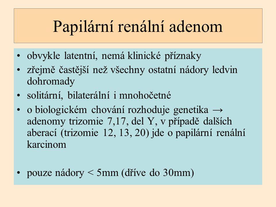 Papilární renální adenom obvykle latentní, nemá klinické příznaky zřejmě častější než všechny ostatní nádory ledvin dohromady solitární, bilaterální i