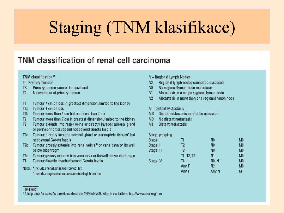 Staging (TNM klasifikace)