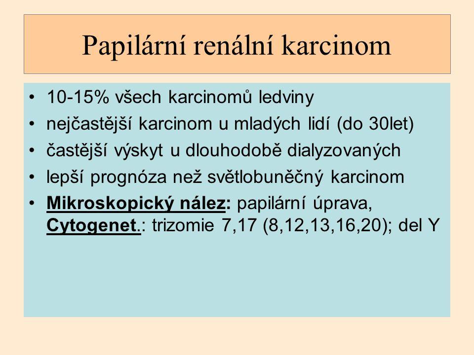Papilární renální karcinom 10-15% všech karcinomů ledviny nejčastější karcinom u mladých lidí (do 30let) častější výskyt u dlouhodobě dialyzovaných le