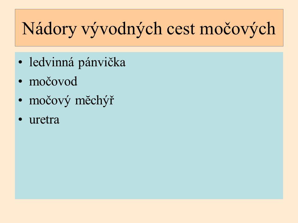 ledvinná pánvička močovod močový mĕchýř uretra