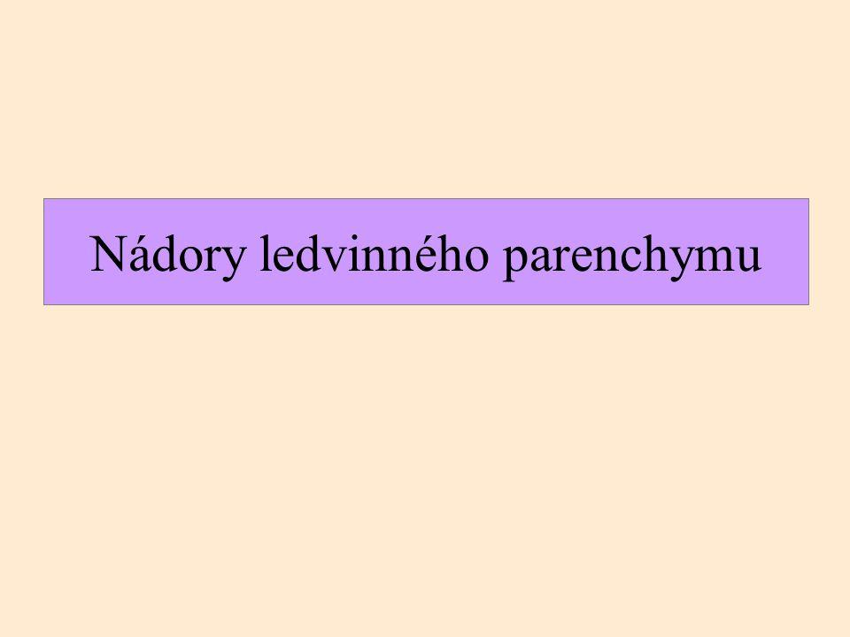 epitelové papilární renální adenom renální onkocytom mezenchymové angiomyolipom dřeňový (medulární) fibrom epitelové svĕtlobunĕčný karcinom papilární renální karcinom chromofóbní karcinom nefroblastické Wilmsův nádor (nefroblastom) Benigní nádoryMaligní nádory