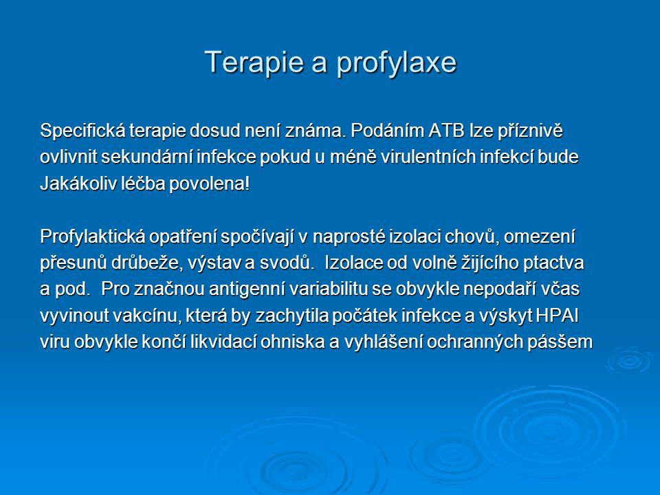 Terapie a profylaxe Specifická terapie dosud není známa. Podáním ATB lze příznivě ovlivnit sekundární infekce pokud u méně virulentních infekcí bude J